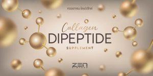 คอลลาเจน ไดเปปไทด์ Collagen dipeptide