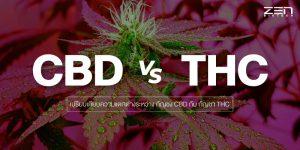 เปรียบเทียบความแตกต่างระหว่าง กัญชง CBD กับ กัญชา THC กันเถอะ !!!